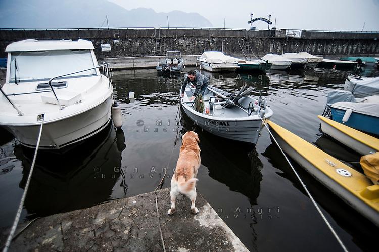 Sono circa un centinaio i pescatori professionisti che tutte le sere gettano le reti nel lago di Como per poi recuperarle all'alba. Persici, trote, lavarelli, agoni sono i pesci più pregiati, ma da qualche anno, è apparso anche il famigerato pesce siluro.