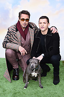 "Robert Downey Jr and Tom Holland with Tess the dog<br /> arriving for the ""Dolittle"" premiere at the Empire Leicester Square, London.<br /> <br /> ©Ash Knotek  D3549 25/01/2020"