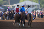 ARCADIA, CA - NOV 4: Tamarkuz #8, ridden by Mike Smith, after winning the Breeders' Cup Dirt Mile at Santa Anita Park on November 4, 2016 in Arcadia, California. (Photo by Kaz Ishida/Eclipse Sportswire/Breeders Cup)