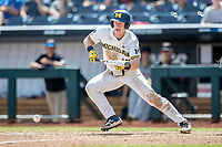 Michigan Wolverines first baseman Jimmy Kerr (15) lays down a bunt single in the 6th inning of the NCAA College World Series against the Texas Tech Red Raiders on June 21, 2019 at TD Ameritrade Park in Omaha, Nebraska. Michigan defeated Texas Tech 15-3 and will play in the CWS Finals. (Andrew Woolley/Four Seam Images)