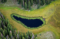 Grand Mesa National Forest. Ponds in early fall.