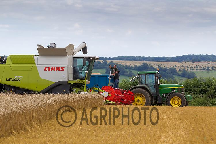 Harvesting Winter Wheat in Rutland<br /> Picture Tim Scrivener 07850 303986