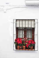 Spain, Malaga, Frigiliana, December 2013<br /> <br /> The old moorish village of Frigiliana in Andalucia is one of the most beautifully maintained and renovated white villages in the south of Spain. During the last 40 years life in this village has changed drastically. In the early 70s most people were farmers and now you rarely see an animal in the village. A big number of village homes are now owned by foreign expats and many tourists are visiting the village.<br /> <br /> Photo Kees Metselaar