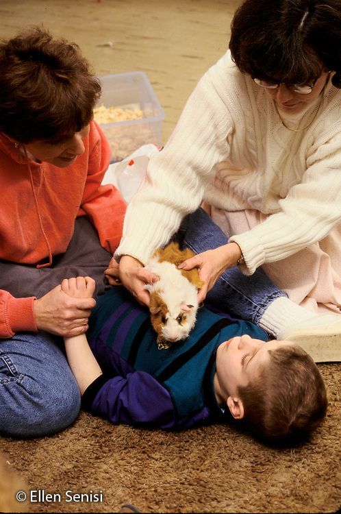 MR / Schenectady, NY.Yates Arts Magnet School / Special Education Class.Pet therapy for boy (7, autistic, ADHD, Epilepsy) with teacher and student teacher. Guinea pig is placed on his chest as he is held in position..MR: SNB.PN#:16292                        FC#:21602-00102.scan from slide.©Ellen B. Senisi
