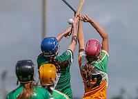 2016 07 Camogie Limerick v Offaly