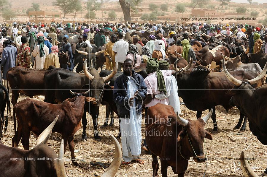 NIGER, Sahel, Zinder, cattle market with Zebu cows