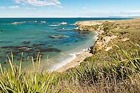 Coastline near Shag Point village, Coastal Otago, East Coast, New Zealand