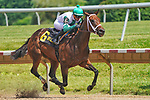 July 10, 2021: Chub Wagon #6, ridden by jockey Jomar Torres wins the Dashing Beauty Stakes at Delaware Park  Park in Wilmington, Delaware on July 10, 2021. Scott Serio/Eclipse Sportswire/CSM