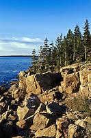 Coastal landscape, Ocean Drive, Acadia NP, Maine, ME, USA