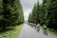 peloton through the highest forests in Belgium; the Hautes Fagnes<br /> <br /> Ster ZLM Tour (2.1)<br /> Stage 4: Hotel Verviers > La Gileppe (Jalhay)(190km)