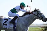 Forever Together with Julien Leparoux runs second in The Jenny Wiley (grII) at Keeneland Race Course. 04.10.2010