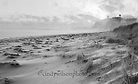 Winter winds sweep across the sandy Block Island beach.