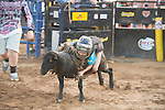 SEBRA - Doswell, VA - 6.30.2014 - Mutton Bustin'
