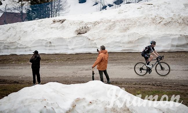 Michael Storer (AUS/DSM) up the final part of the Monte Zoncolan <br /> <br /> 104th Giro d'Italia 2021 (2.UWT)<br /> Stage 14 from Cittadella›Monte Zoncolan (205km)<br /> <br /> ©kramon