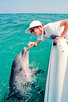woman feeds wild bottlenose dolphin, Tursiops truncatus, Gulf of Mexico, Atlantic Ocean