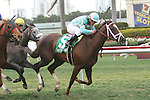 Channel Lady with Javier Castellano wins the 37th running of the Suwannee River (Grade 3) for fillies & mares, 4-year olds & up, going 1 1/8 mile on the turf, at Gulfstream Park.  Trainer Todd Pletcher.  Owner James Scatuorchio and J.J.Pletcher