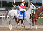 Hit It Rich, ridden by Javier Castellano, runs in the Flower Bowl Invitational Stakes (GI) at Belmont Park in Elmont, New York on September 29, 2012.  (Bob Mayberger/Eclipse Sportswire)