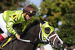 18 October 2009: Jockey Javier Castellano gallops Unspoken Word, winner of the third race at Keeneland back to the trainer.