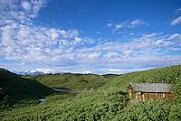 Historic log cabin, Kantishna gold mining district, Kantishna, Alaska, Denali National Park