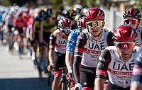 Davide Formolo (ITA/UAE-Emirates)<br /> <br /> Stage 6 from Castelraimondo to Lido di Fermo (169km)<br /> <br /> 56th Tirreno-Adriatico 2021 (2.UWT) <br /> <br /> ©kramon