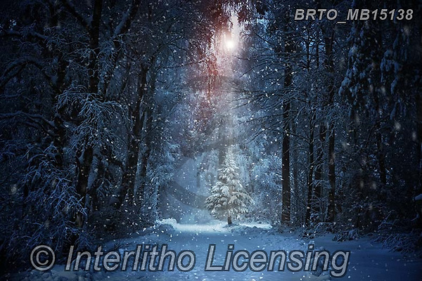Alfredo, CHRISTMAS SYMBOLS, WEIHNACHTEN SYMBOLE, NAVIDAD SÍMBOLOS, photos+++++,BRTOMB15138,#xx#