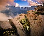 Trail Ridge, Continental Divide, Rocky Mountain National Park, Colorado