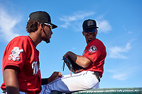 Billings Mustangs Reyny Reyes (17) and Reniel Ozuna (23) before a Pioneer League game against the Grand Junction Rockies at Dehler Park on August 15, 2019 in Billings, Montana. Billings defeated Grand Junction 11-2. (Zachary Lucy/Four Seam Images)