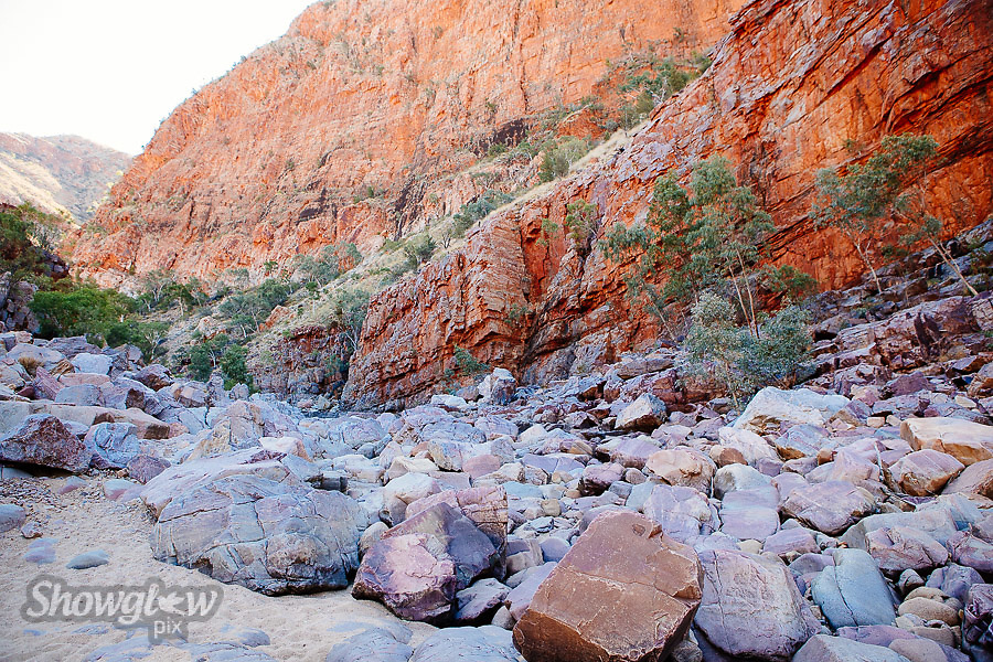 Image Ref: CA547<br /> Location: Ormiston Gorge, Northern Territory<br /> Date of Shot: 16.09.18