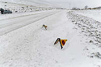 WEATHER PICTURE WALES<br /> Pictured: Police cones covered by snow at the side of the A470 road in Storey Arms, Brecon Beacons in south Wales, UK. Friday 02 March 2018<br /> Re: Beast from the East and Storm Emma has been affecting most parts of the UK.