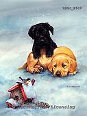 GIORDANO, CHRISTMAS ANIMALS, WEIHNACHTEN TIERE, NAVIDAD ANIMALES, paintings+++++,USGI2547,#XA#