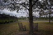 Jacksonville, Florida<br /> November 4, 2013<br /> <br /> Veteran's sustainable farm founded by Purple Heart veteran Adam Burke and managed by Afghan and Iraqi veteran Steve Ellseberry.<br /> <br /> Two rocking chairs sit under a tree between the fields. The quiet nature of the farm not only grows food but helps veterans deal with issues such as PTSD and stress.