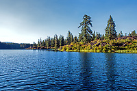 Summer at Clear Lake in the Willamette National Forest, Oregon.