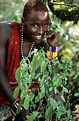 Lolgorian, Kenya. Siria Maasai man with scented plant 'Esongoyo'; leaves used as perfume. Acanthaceae, probably Justicia.