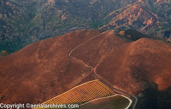 A mountain vineyard survives the Nuns Fire in the Mayacama Mountains, Sonoma County, California, northern California wildfires, 2017