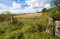 Farm gate leading to harvest stubble field - Gloucestershire, September