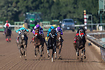 ARCADIA, CA - NOV 05: California Diamond #4(skyblue Right), ridden by Kent Desormeaux, wins the Golden State Juvenile Stakes at Santa Anita Park on November 4, 2016 in Arcadia, California. (Photo by Kazushi Ishida/Eclipse Sportswire/Breeders Cup)
