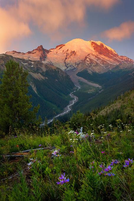 Soft sunrise light illuminates Mt. Rainer and the valley below.