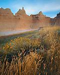Badlands National Park, SD  <br /> Summer afternoon light on grasses and rabbit brush with badlands skyline near Cedar Pass