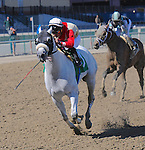 April 4, 2015: Frosted with Joel Rosario wins the Grade I Twinspires.com Wood Memorial for 3-year olds, going 1 1/8 mile at Aqueduct Racetrack. Trainer: Kiaran McLaughlin. Owner: Godolphin Stables. Sophie Shore/ESW/CSM