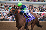 """DEL MAR, CA - AUGUST 26: Giant Expectations #10, ridden by Gary Stevens wins the Grade II """"Win and You're In"""" Pat O'Brien Stakes at Del Mar Thoroughbred Club on August 26, 2017 in Del Mar, California.  (Photo by Zoe Metz/Eclipse Sportswire/Getty Images)"""