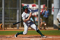 Dartmouth Big Green Kolton Freeman (28) bats during a game against the Omaha Mavericks on February 23, 2020 at North Charlotte Regional Park in Port Charlotte, Florida.  Dartmouth defeated Omaha 8-1.  (Mike Janes/Four Seam Images)