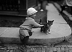 Wilkinsburg PA:  Brady Stewart Jr playing with the neighbor's cat.