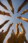A group of camels are circled around at the Pushkar Camel Fair, Rajasthan, India
