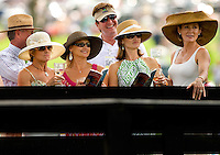 A group of female spectators in their hats during the Queen's Cup Steeplechase in Mineral Springs, NC.