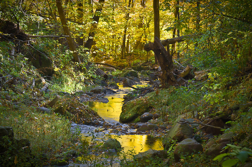 This image was named a finalist in the Landscape category of a statewide photo contest sponsored by the Wisconsin Office of Rural Health in August, 2012.