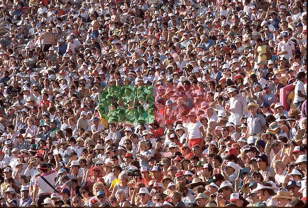 huge crowd in stadium watching sports