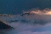 Foggy morning at Zaovine,Tara National Park, Serbia.