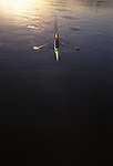 Rowing, women rowers in a pair, bow on, from above, at the catch,