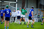 Ballyduffs Aidan Boyle clinches his fist after scoring a goal against St Brendan's in round 2 of the County Hurling Championship