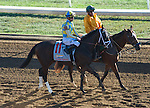 LEXINGTON, KY - OCTOBER 8: Classic Empire #11, ridden by Julien Leparoux, wins the Breeder's Futurity S. at Keeneland Racecourse on October 8, 2016 in Lexington, KY. (Photo by Sophie Shore/Eclipse Sportswire/Getty Images)